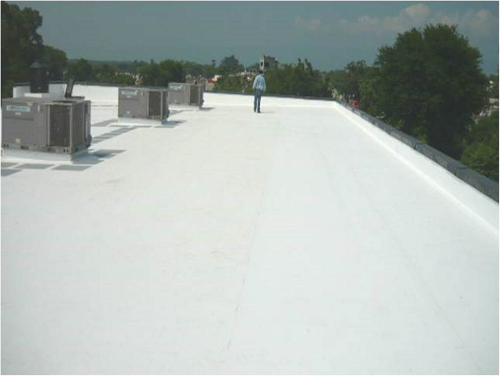 Finish Roof