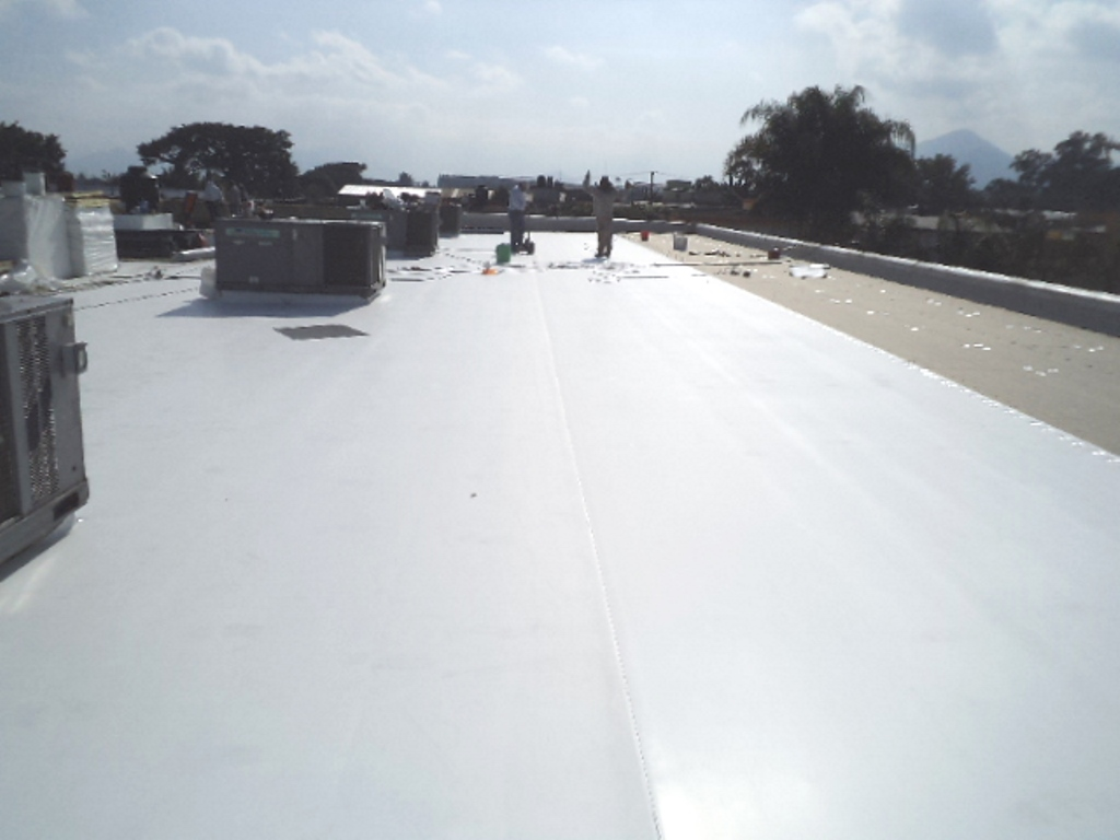 Roof in Process